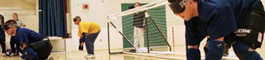 banner goalball